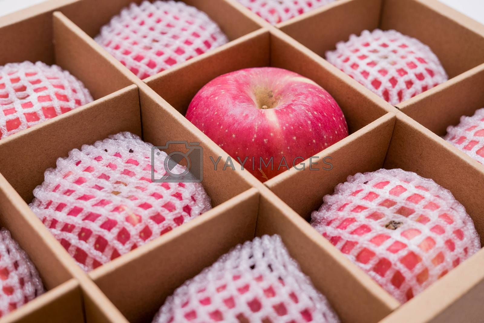 Royalty free image of red apples in paper box by antpkr
