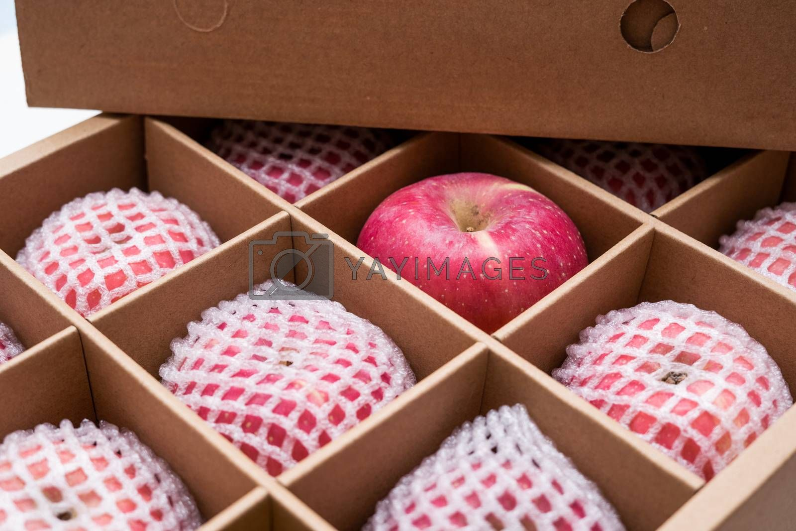 red apples with shockproof foam net wrap in paper box