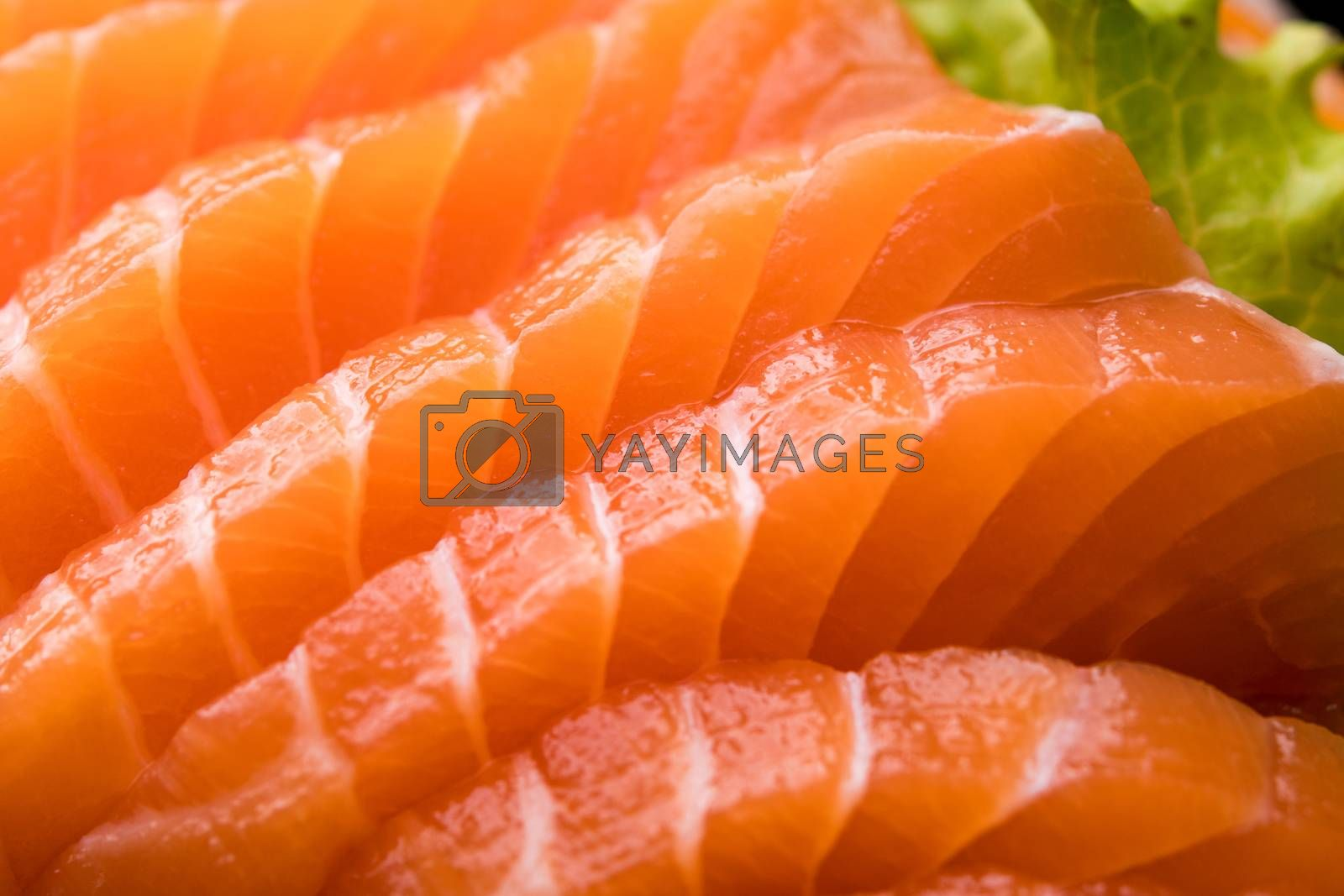 sliced salmon sashimi close up