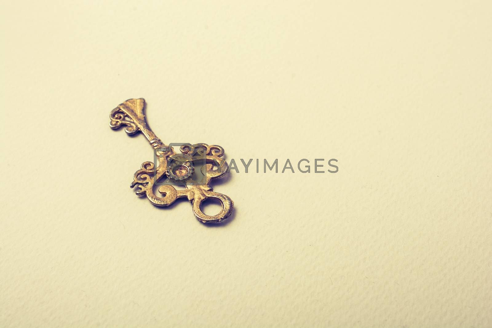 Retro style gold color key on white background