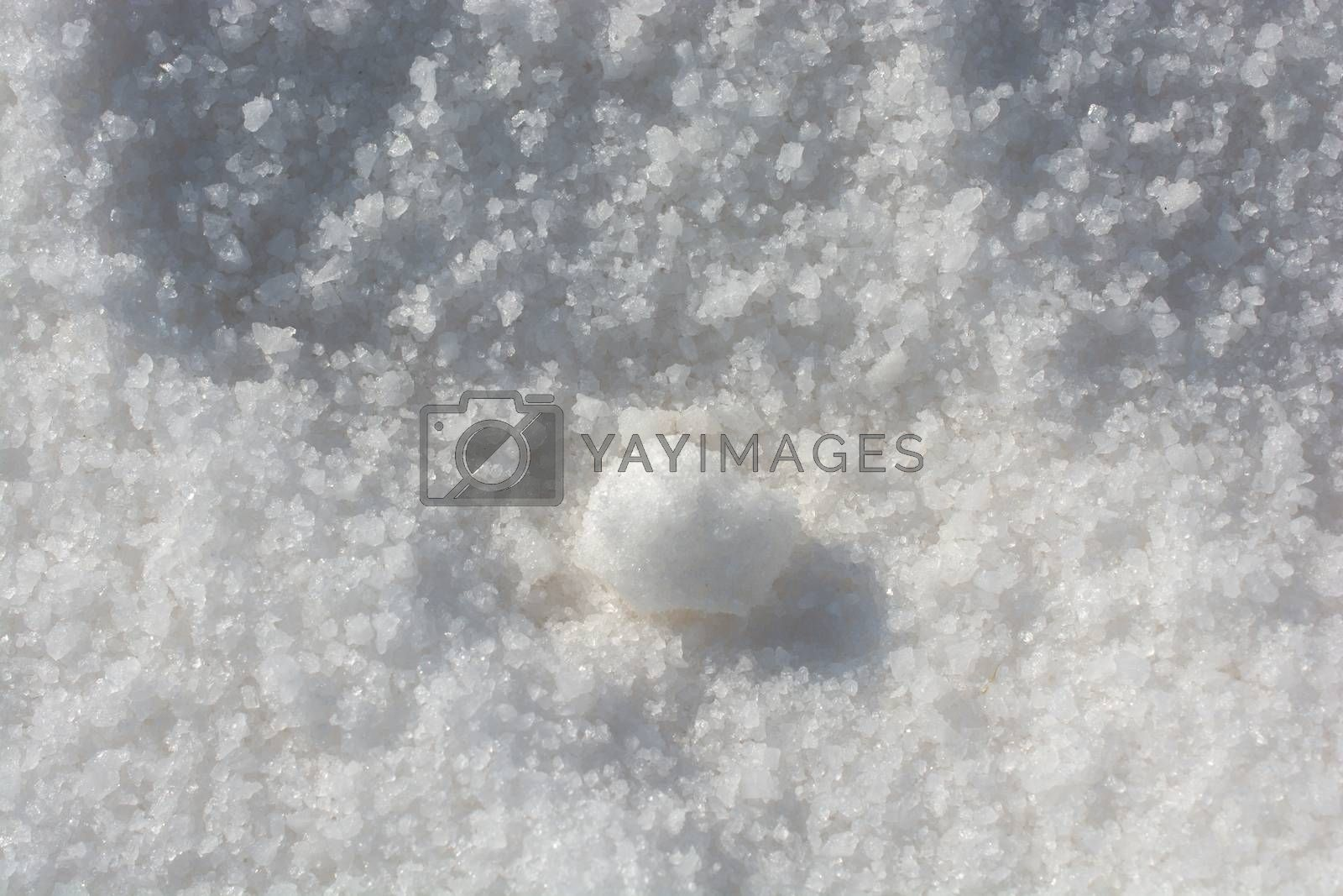 Milled white salt in view as a background
