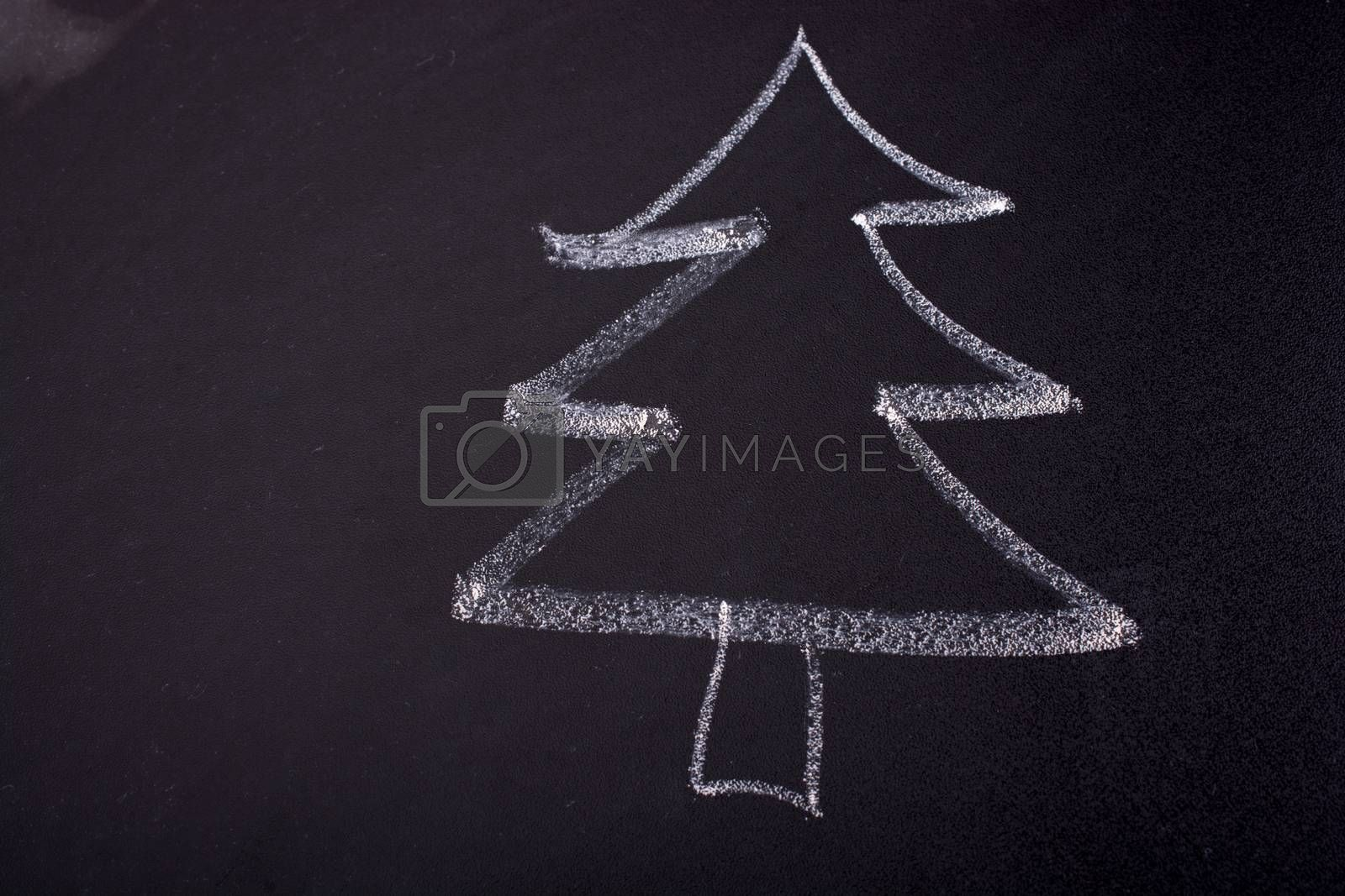 Hand drawing of tree with chalk on a blackboard