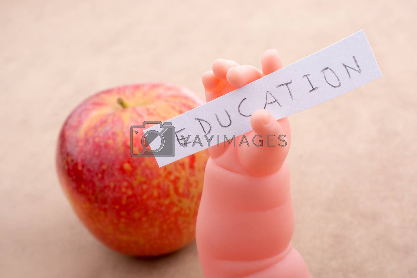 Back to school theme with a red apple