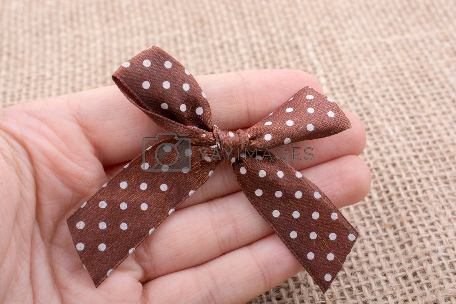 Hand holding a brown color ribbon in hand