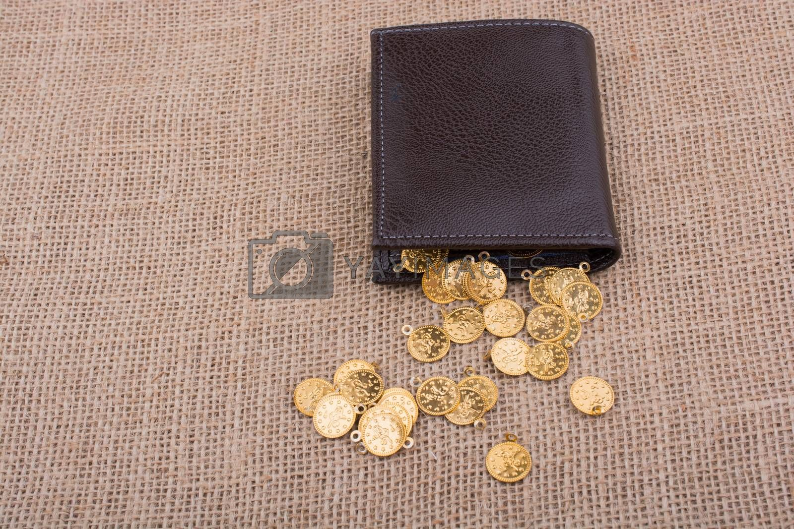 Wallet and plenty of fake gold coins on canvas