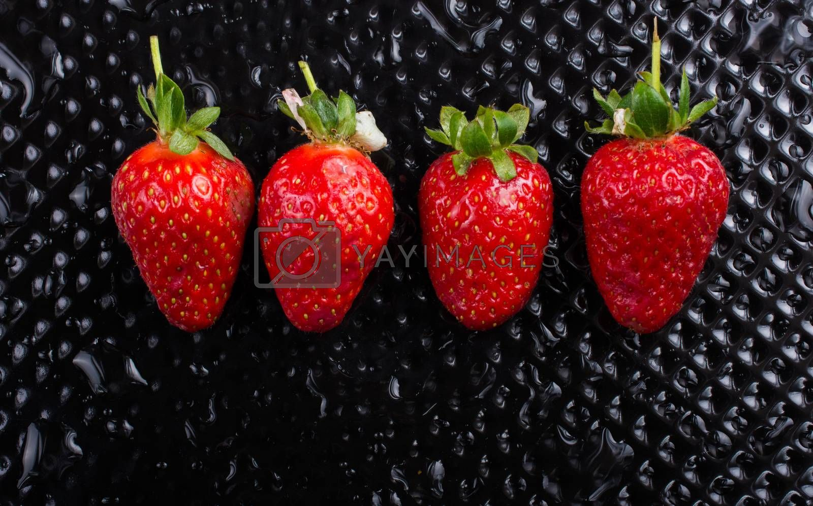 A view of a juicy, sweet and ripe strawberry fruit