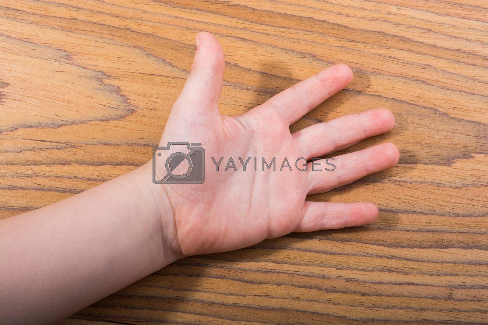 Toddlers hand open with five fingers on wooden texture