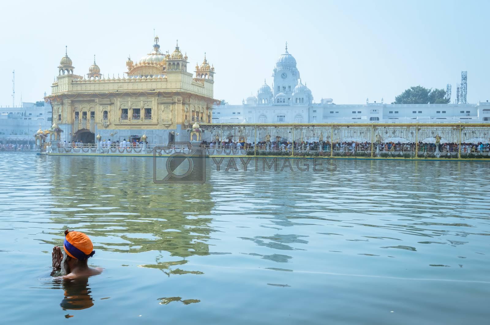 "Unidentifiable Punjabi Sikh pilgrim devotee ""Nihang Warrior"" taking bath and prayer in pond and meditating in front of Golden Temple (""Harmandir Sahib Darbar Gurudwara"") Amritsar, Punjab, India, Asia."