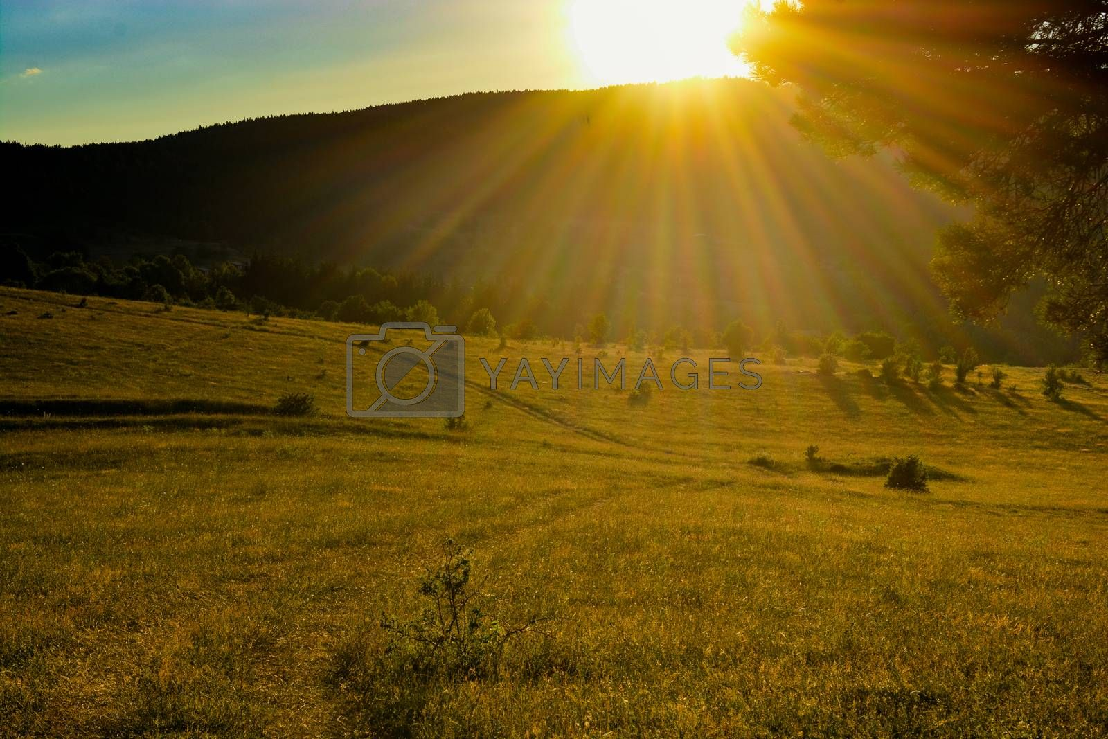 Sunset in countryside landscape in countryside by berkay