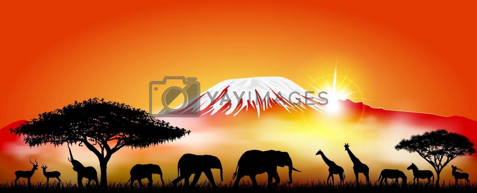 Silhouettes of wild animals of the African savannah on the background of mount Kilimanjaro.