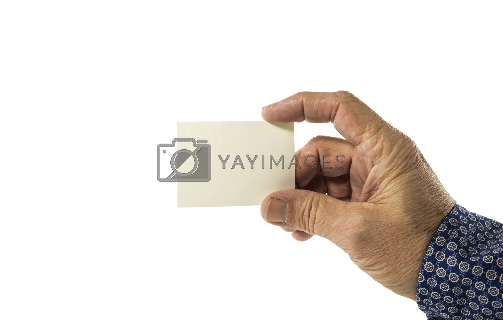 Hand holding blank plain white business card design by compuinfoto