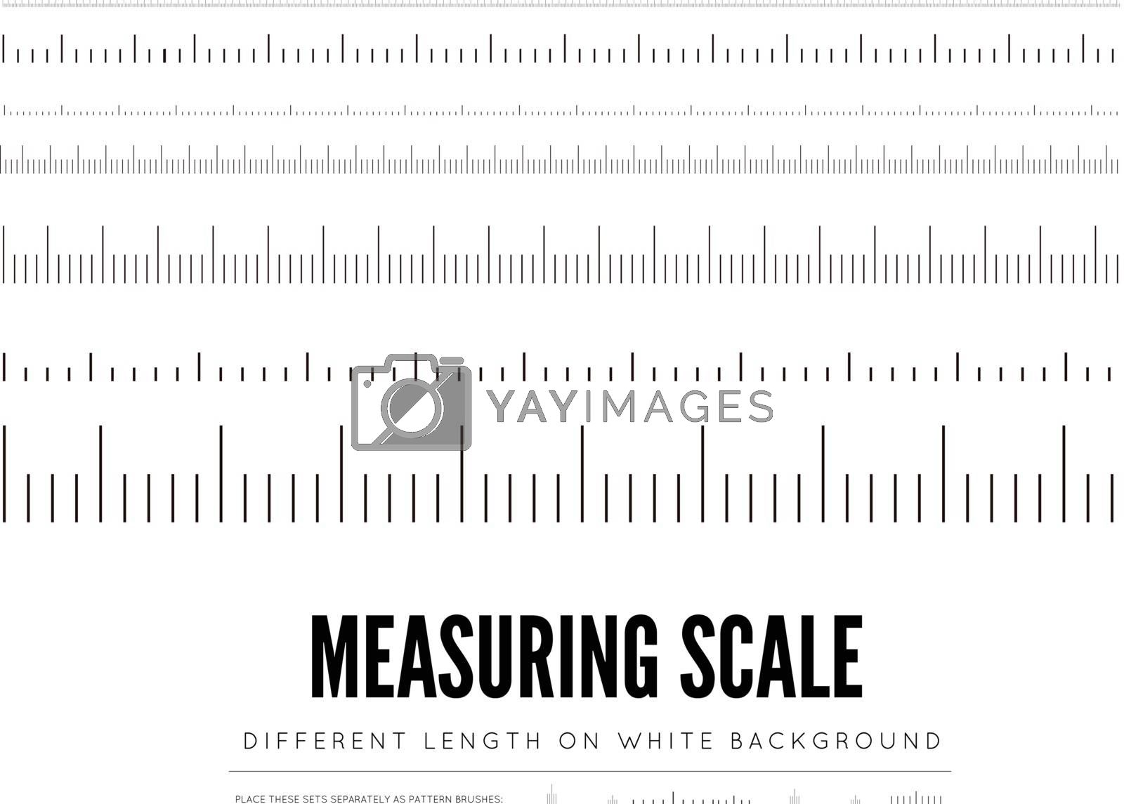 Measuring rulers of different scale, length and shape. Vector illustration on white background