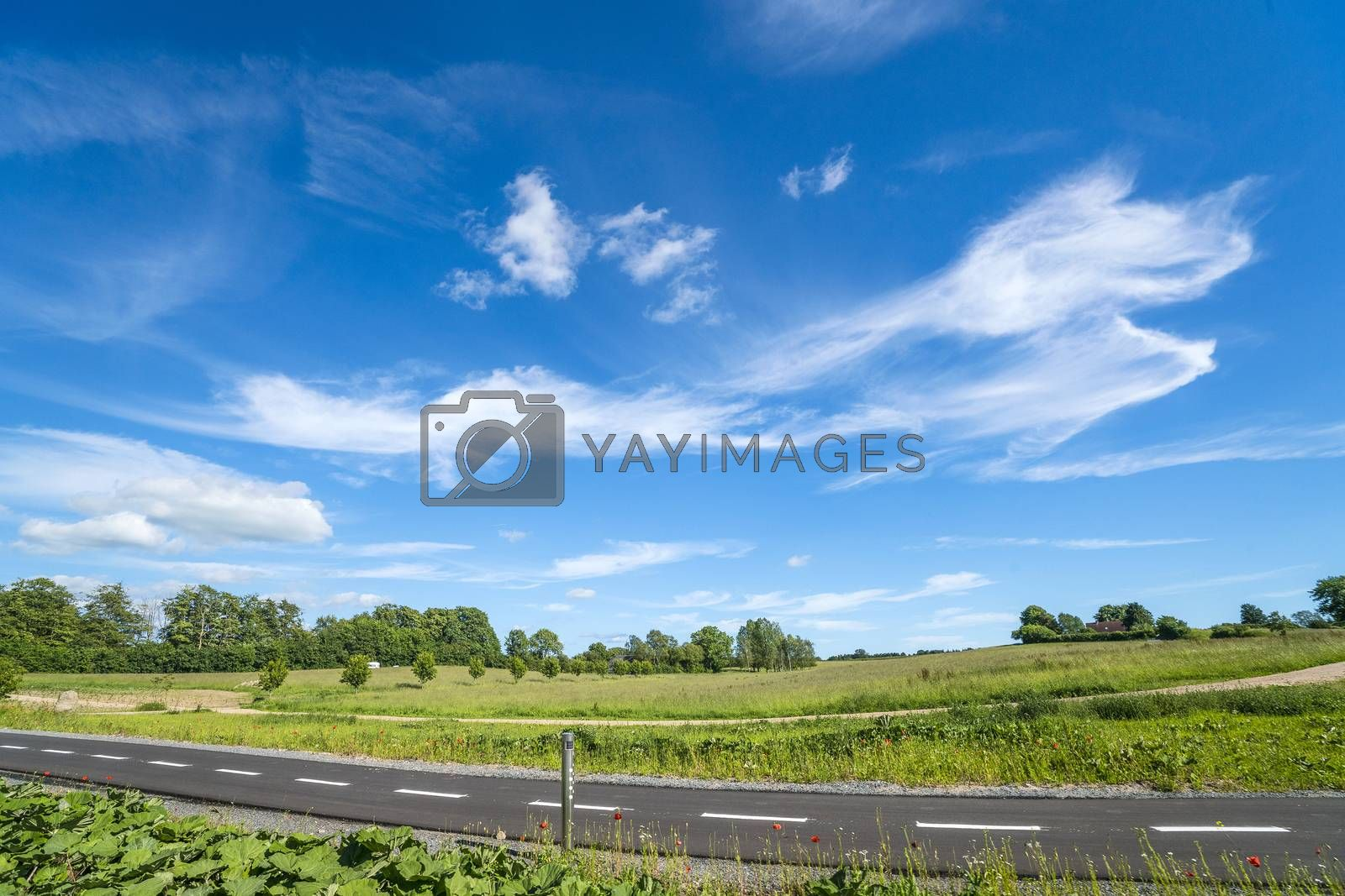 Countryside landscape with a bicycle path in rural surroundings in the summer for safe trafic
