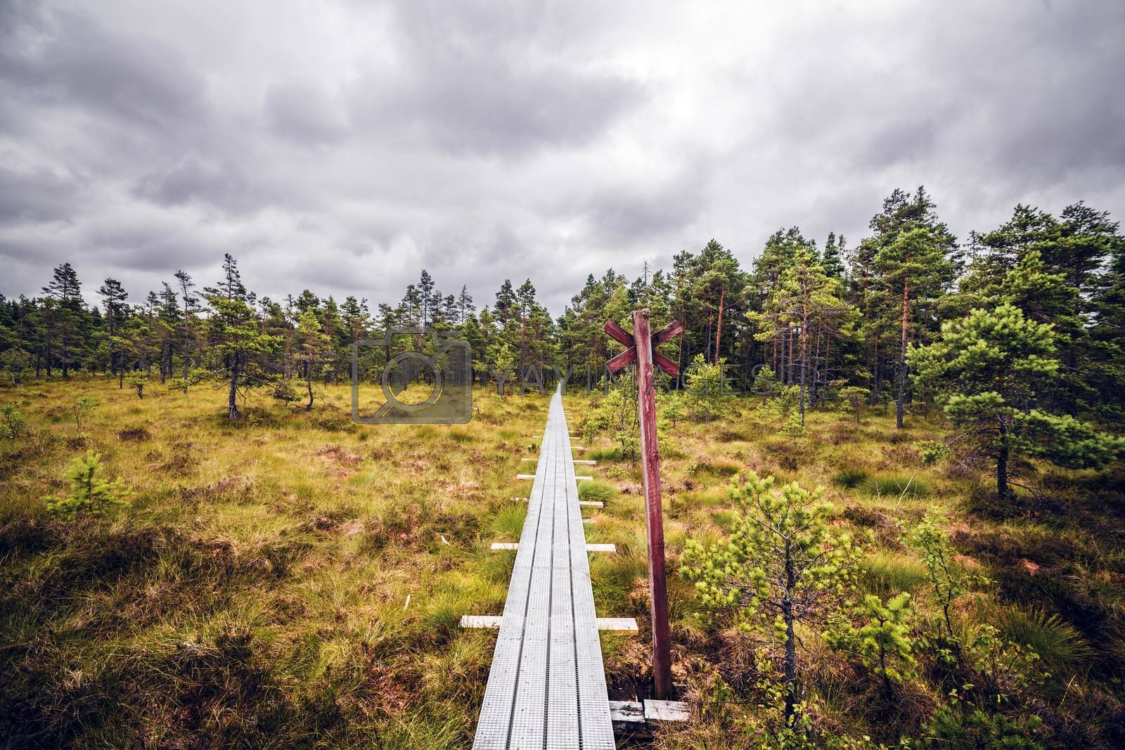 Hiking trail with a red post in a wilderness landscape
