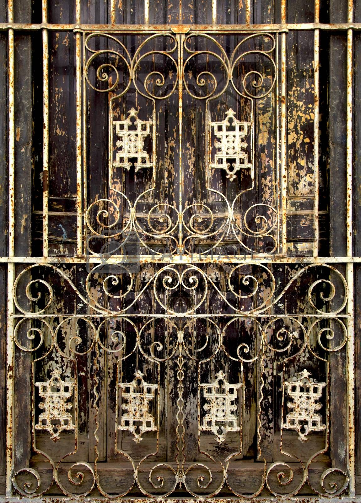 Beautiful forged grille on the wooden  door in Old Havana, Cuba