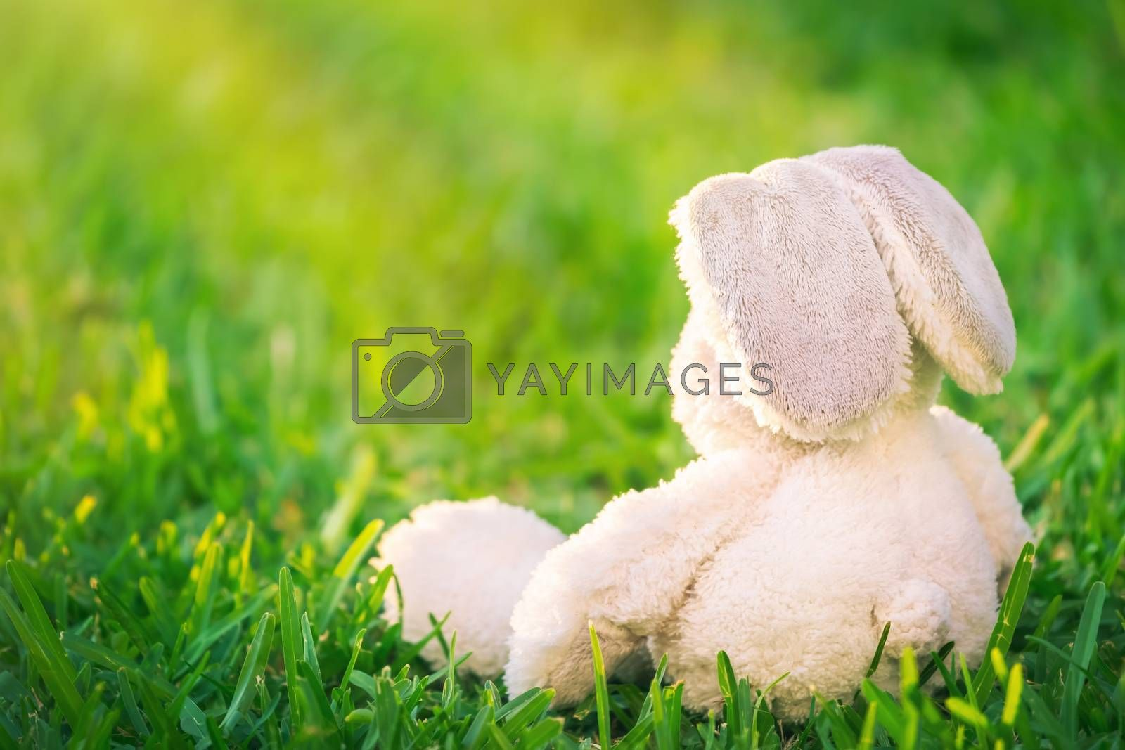 Traditional Easter bunny sitting on fresh green grass field, cute white rabbit soft toy, symbol of a christian religious holiday