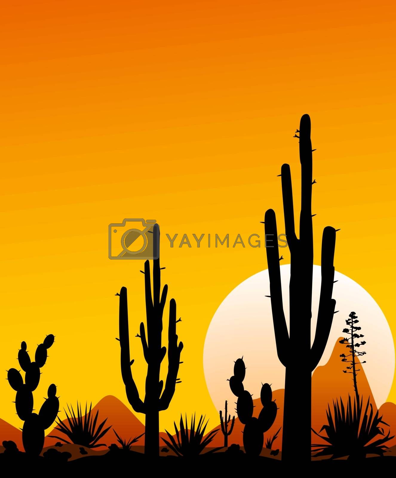 Sunset in the Mexican desert. Silhouettes of stones, cacti and plants. Desert landscape with cacti. The stony desert.