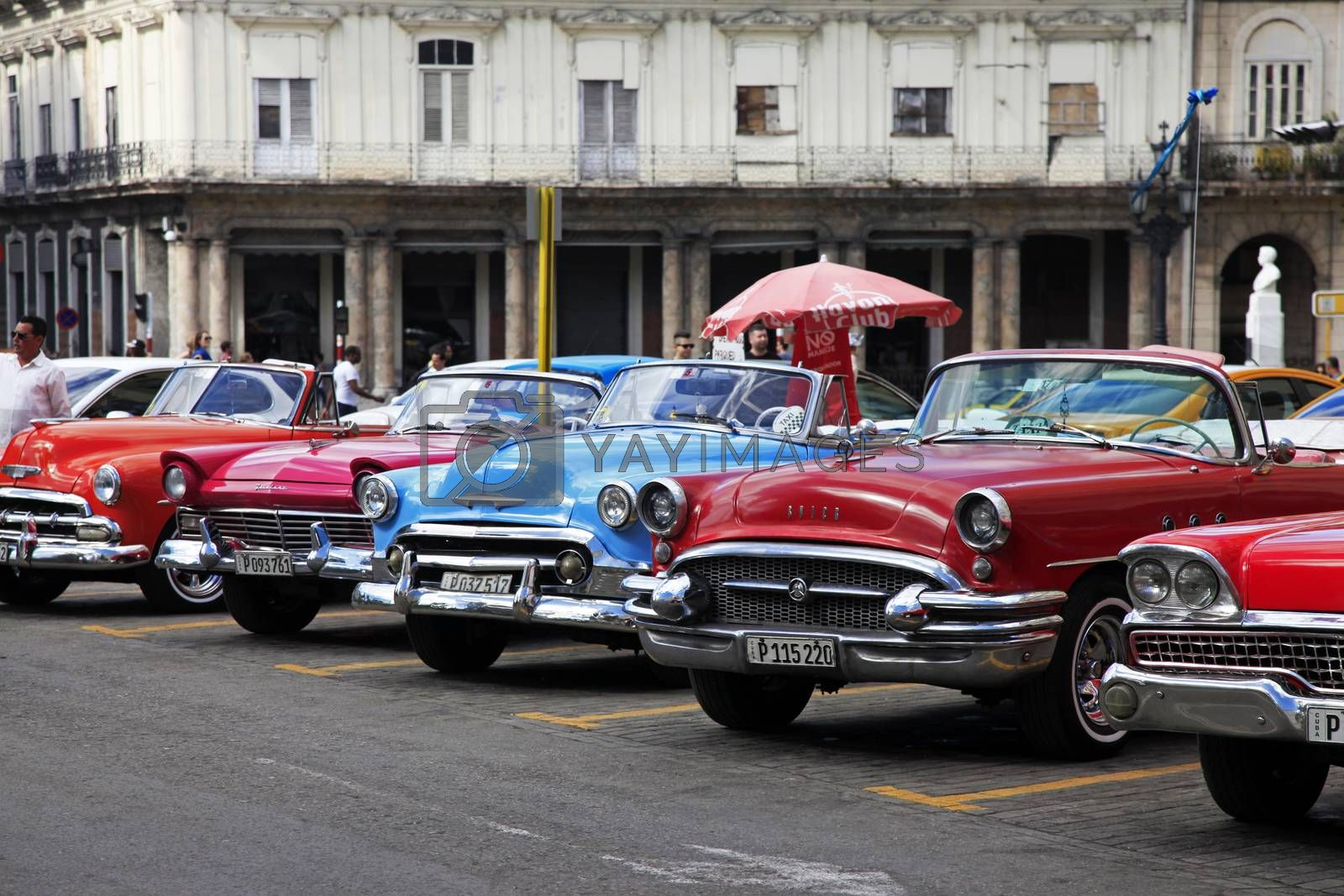 Royalty free image of Vintage classic oldtimer cars in old town of Havana by friday
