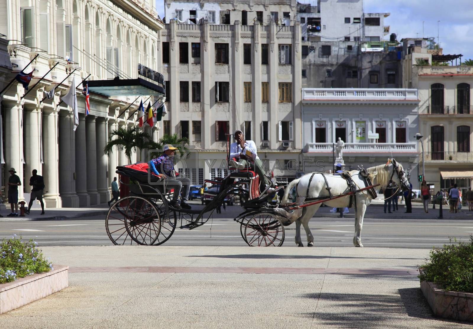 Royalty free image of Horse and carriage on the streets of Havana by friday