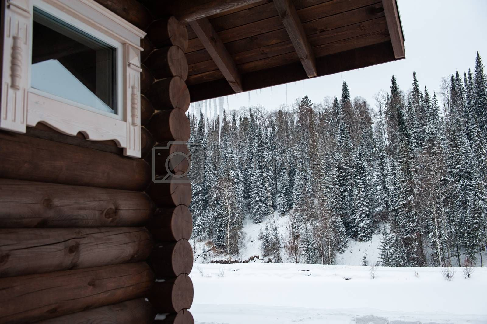 Winter house in forest. Clean air, rest and relaxation. Unity with nature. View from the porch to the forest