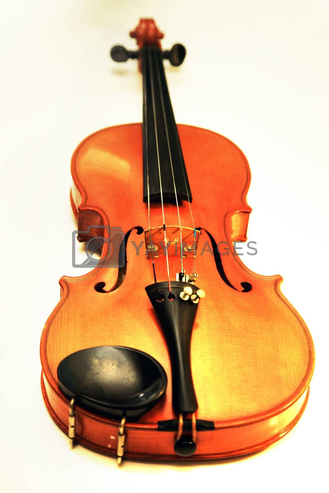 Royalty free image of 1937 old violin in studio close up by friday