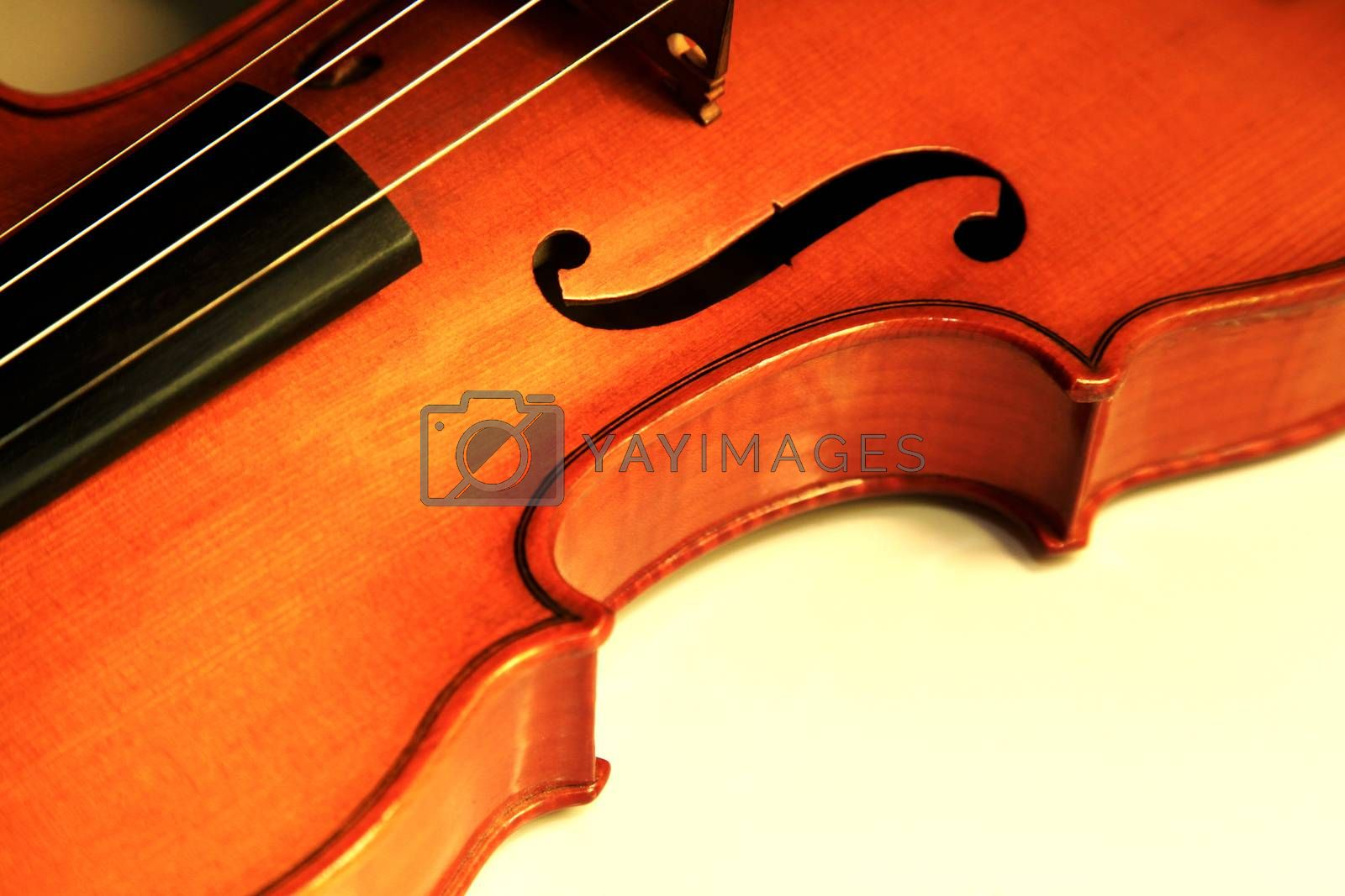 Royalty free image of Old violin  by friday