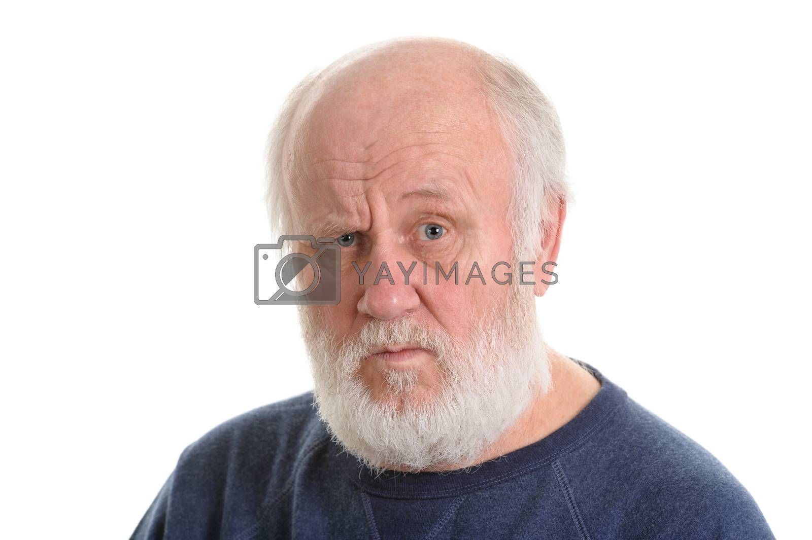 dissatisfied and displeased old bald man isolated portrait isolated on white