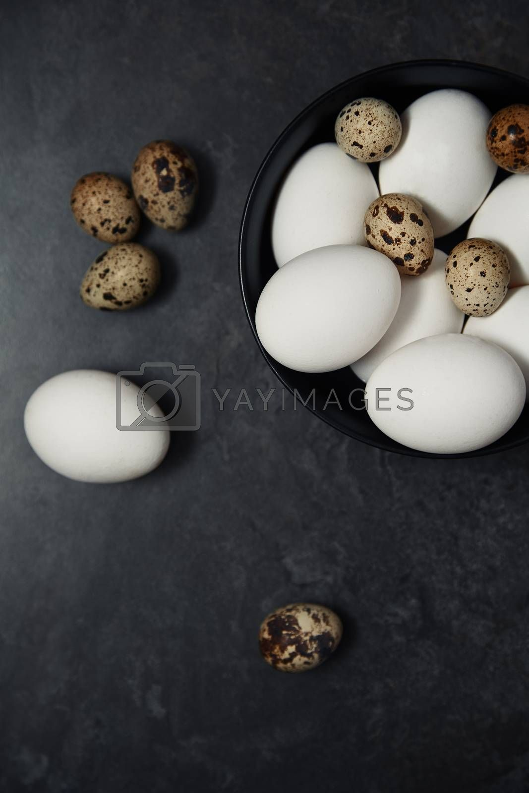Quail and chicken eggs on a table