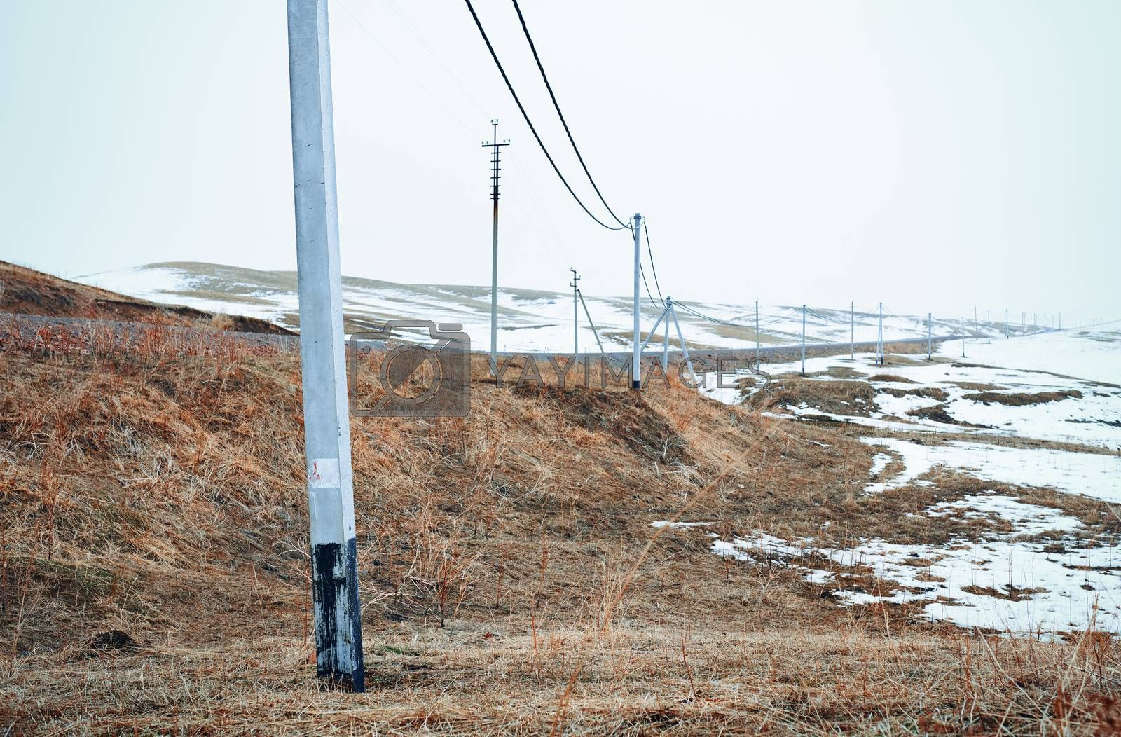 Winter field with power line columns