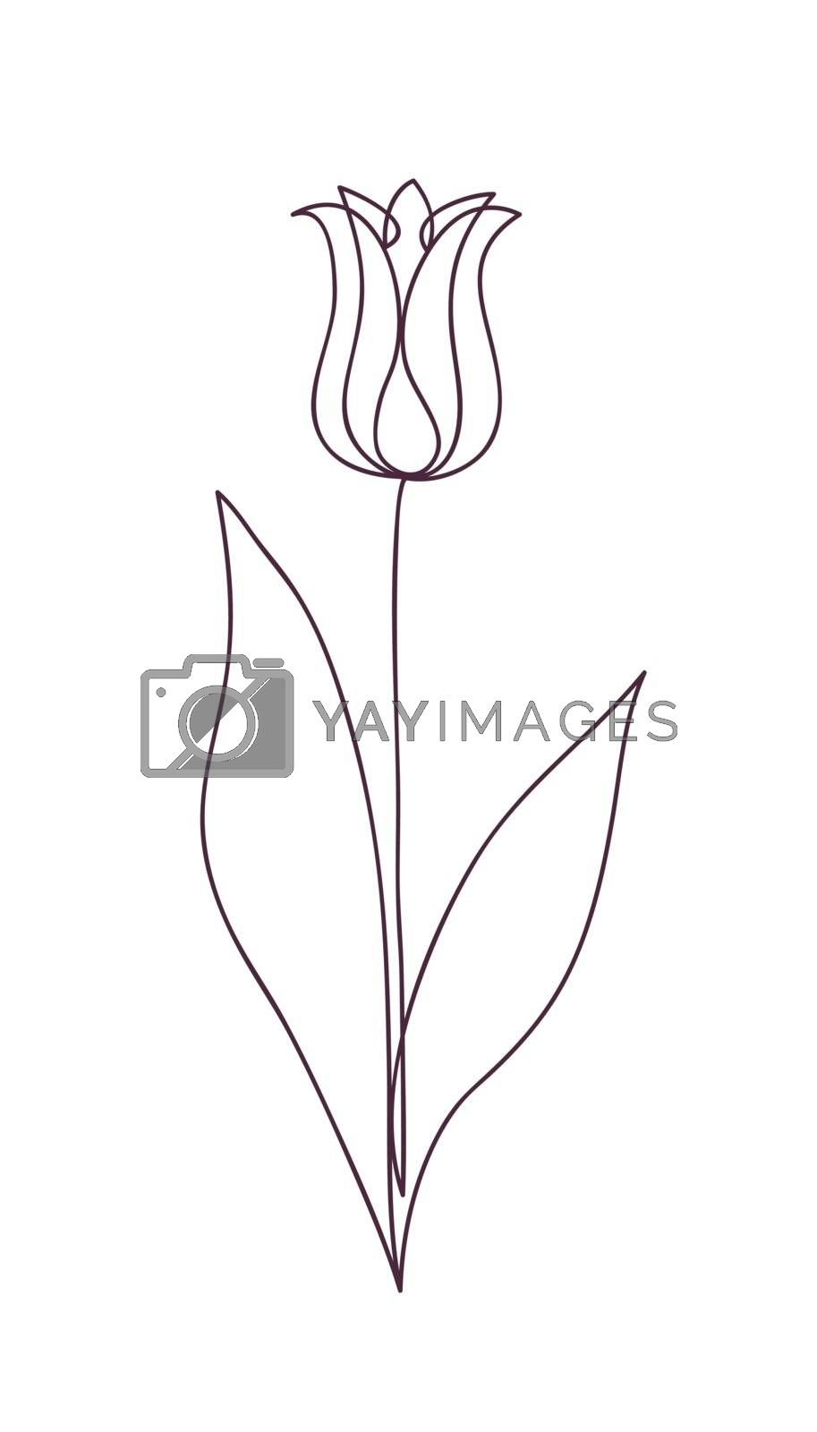 Beautiful tulip flower. Line art concept design. Continuous line drawing. Stylized flower symbol. Vector illustration.