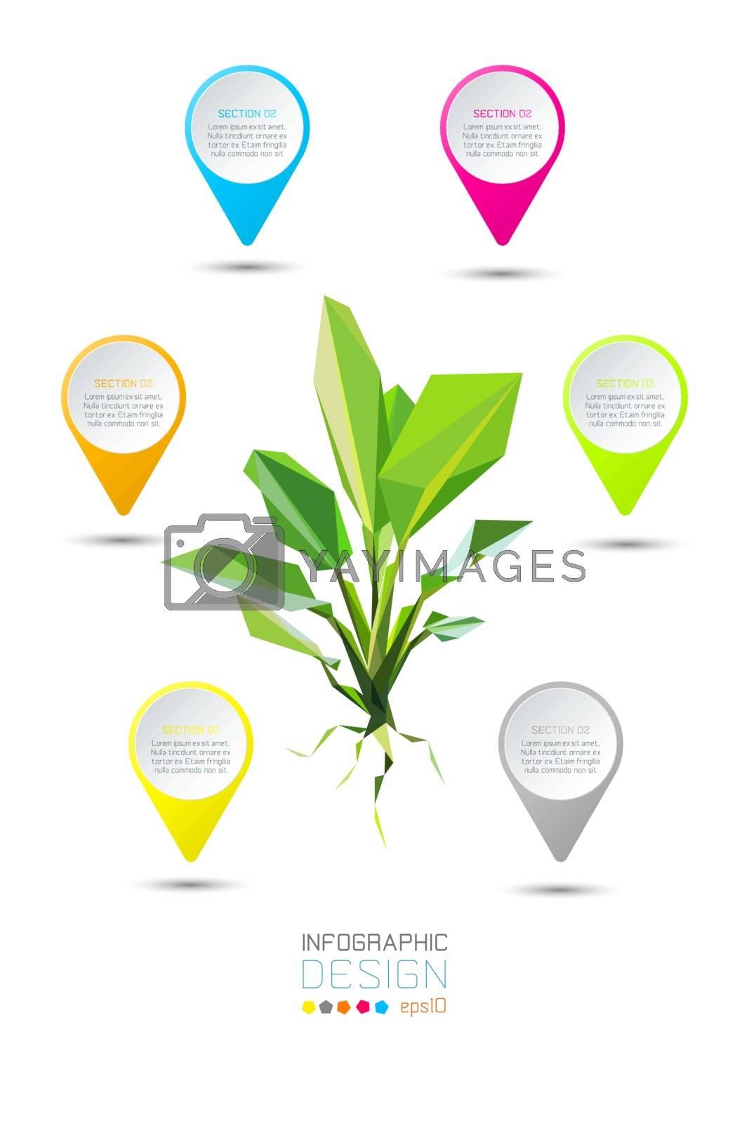 Polygon vector dieffenbachia tree infographic.