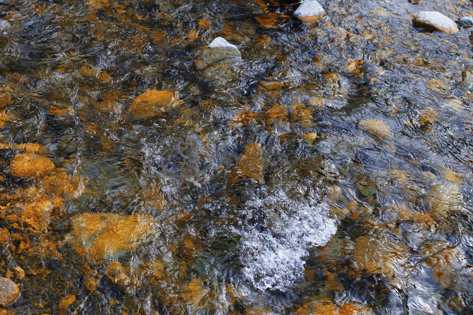River bed with rocky stones. Kent, England