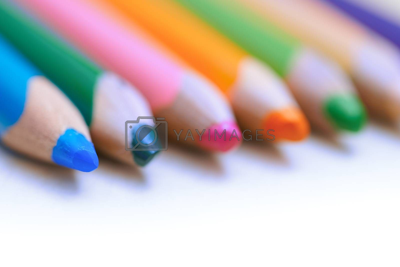 Colorful pencils in a row. Close-up