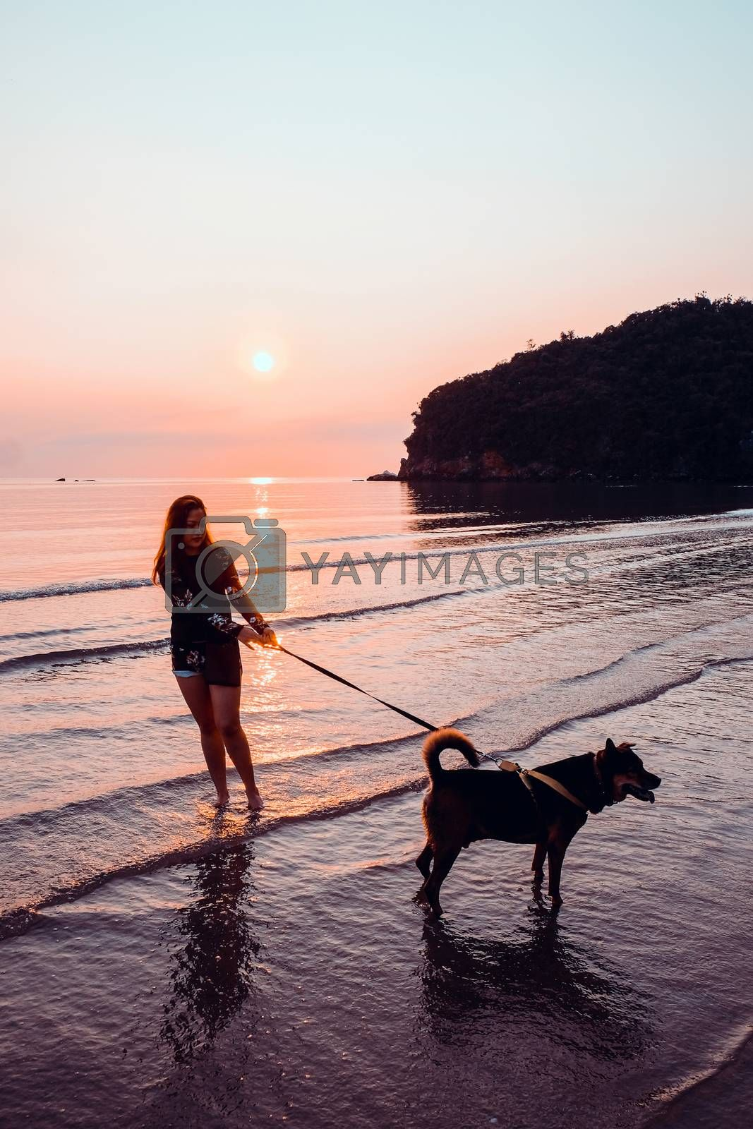 Woman and dog on beach at sunrise