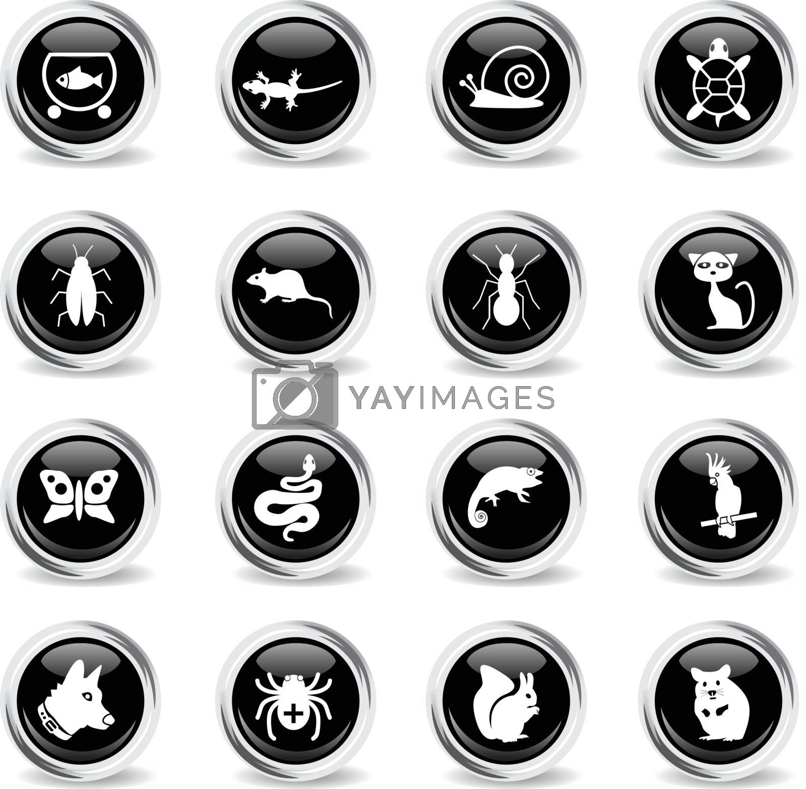 pets web icons - black round chrome buttons