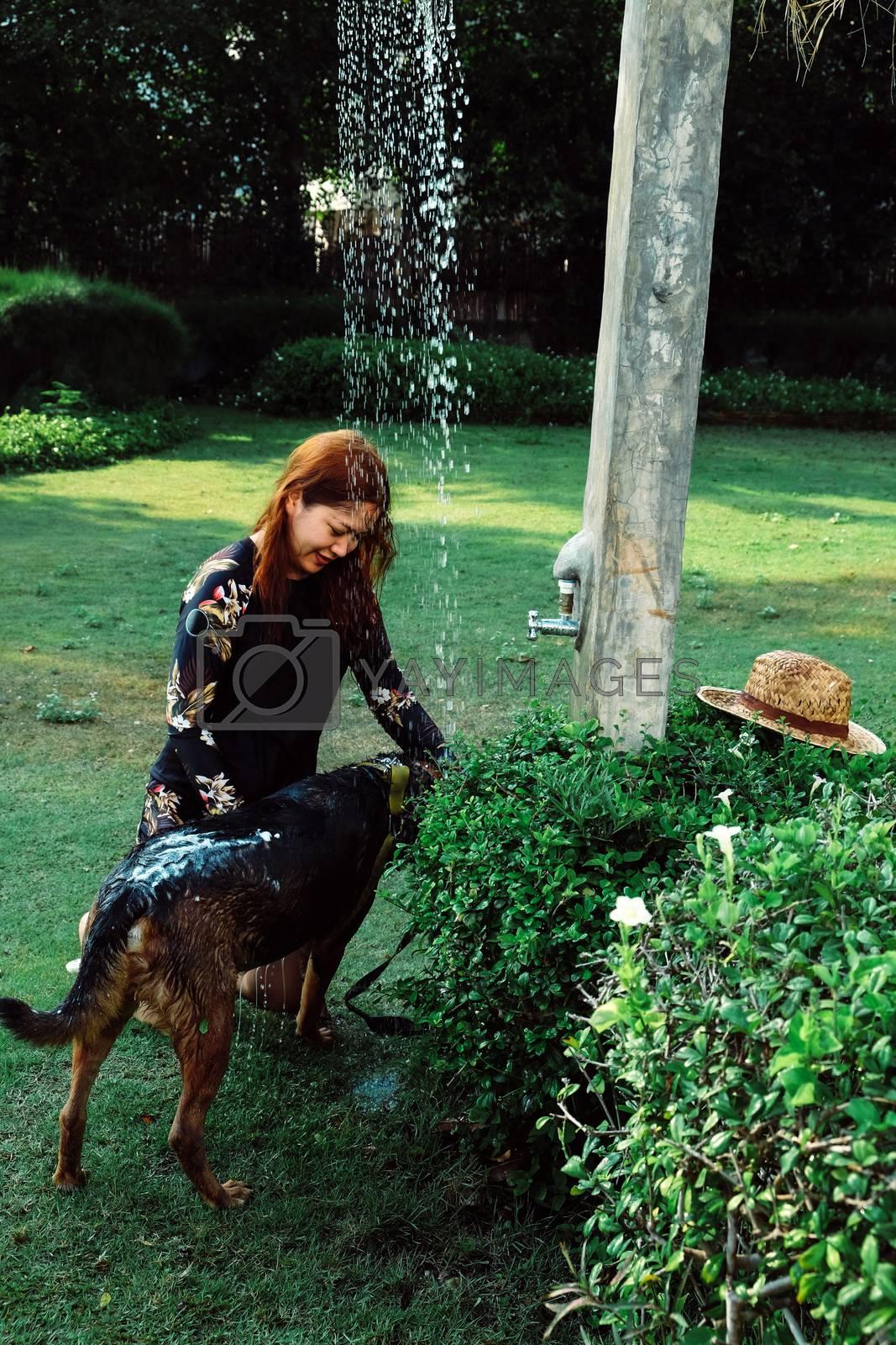 Asian woman washing her pet dog