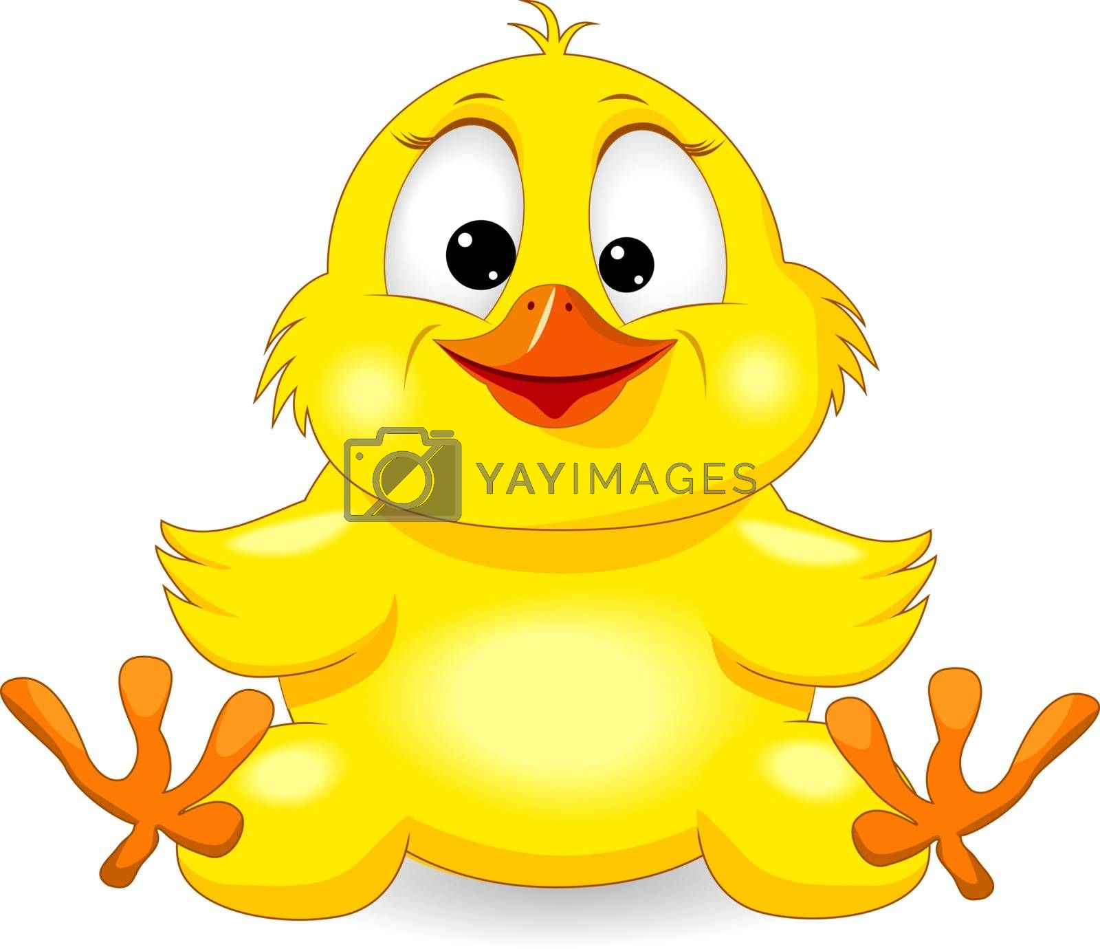 Little yellow chick on a white background. Cartoon chick.