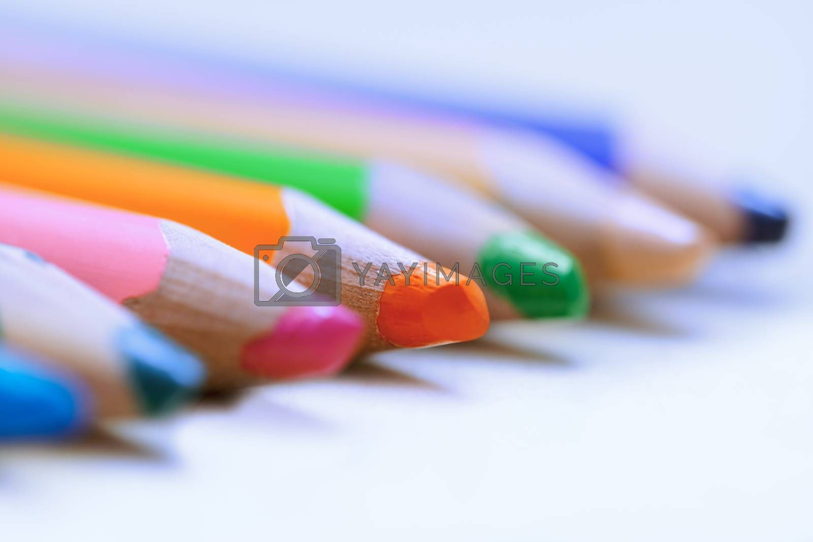 Colorful pencils in a row. Close-up by Novic
