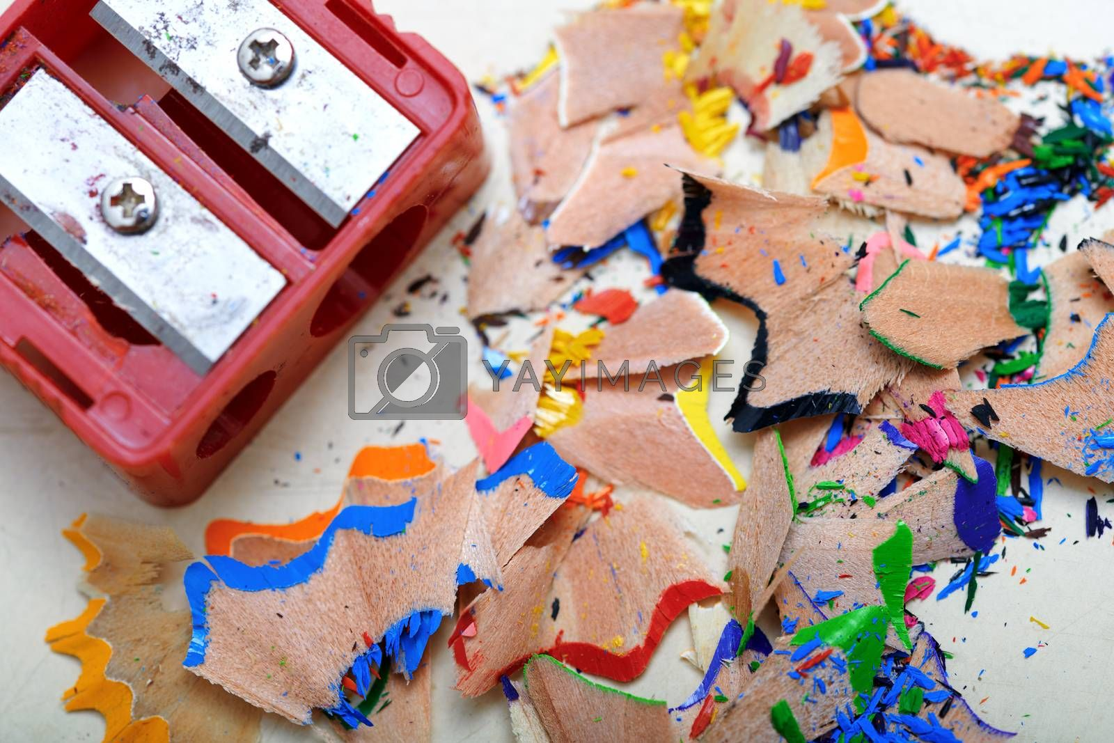 Sharpener and colored pencil shavings