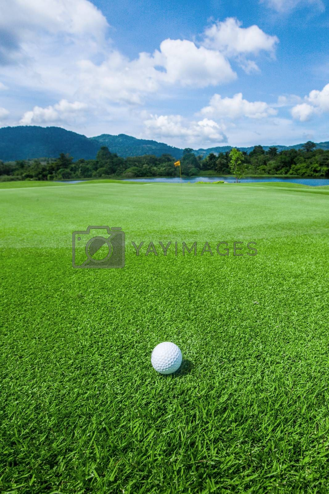 Golf ball above flag and green on tropical course in morning