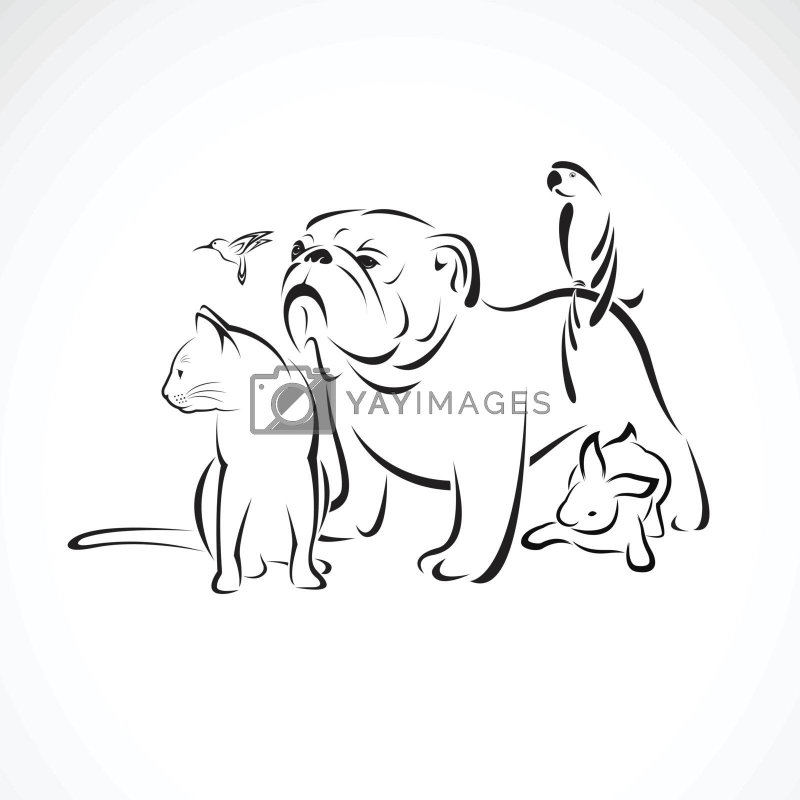 Vector group of pets - Dog, cat, bird, macaw, rabbit isolated on white background., Pet logo or Icon, Vector pet for your design.