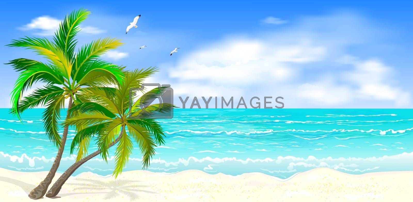 Sea tropical landscape. Sandy beach with palm trees. Seacoast with palm trees, blue sky and white clouds. Palm trees against the background of the sea, sky and clouds.