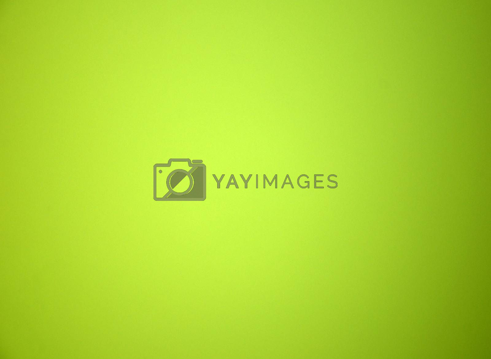 Light green blurred solid color background. Texture, gradient, vignetting
