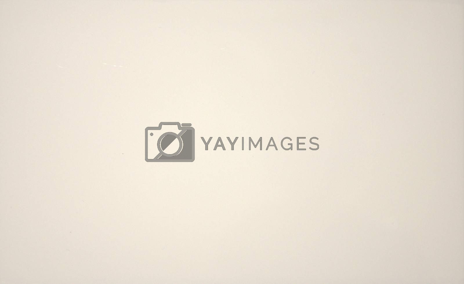 White lurred solid color background. Texture, gradient vignetting