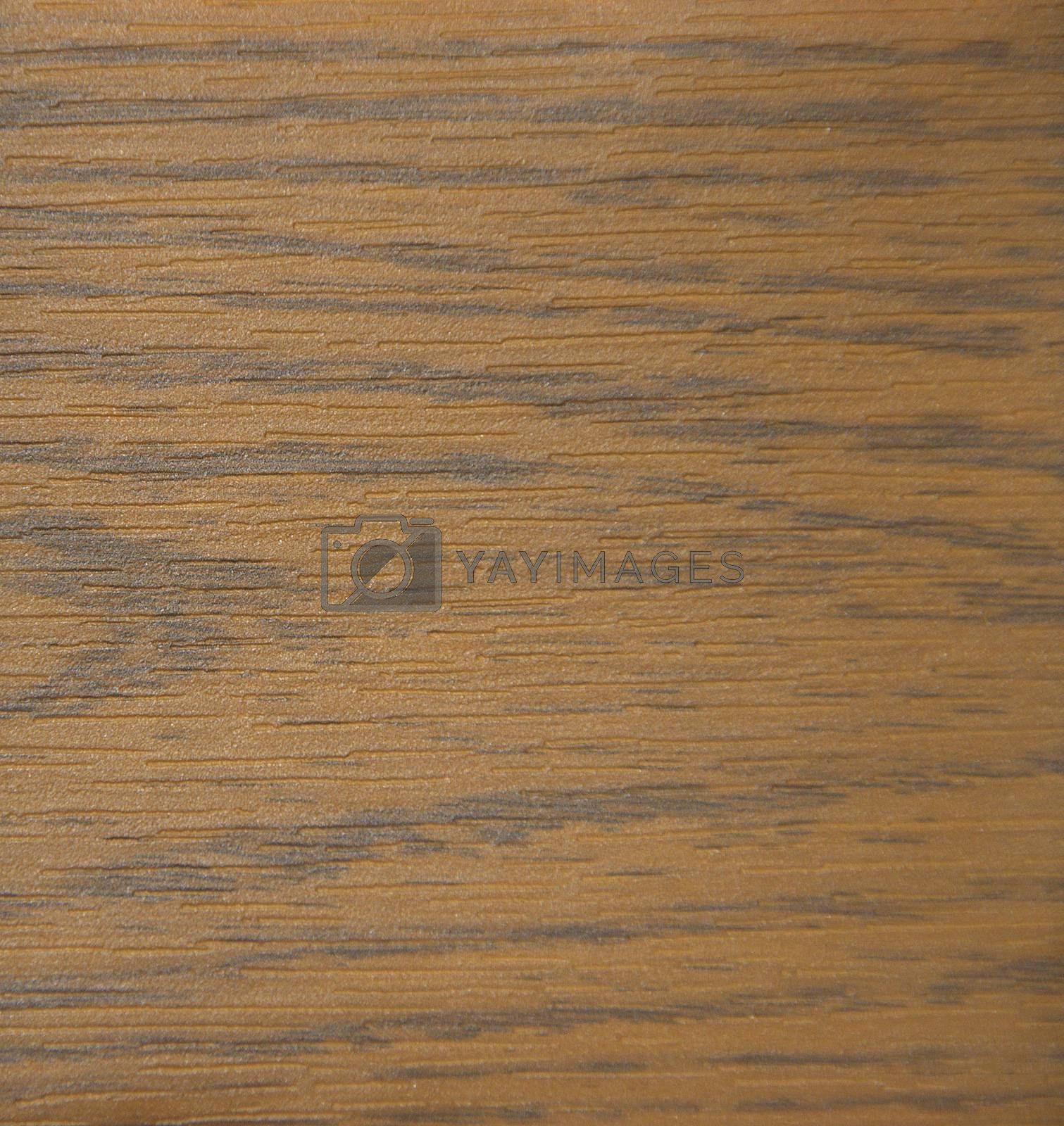 Natural wood cut. Background, texture Close-up
