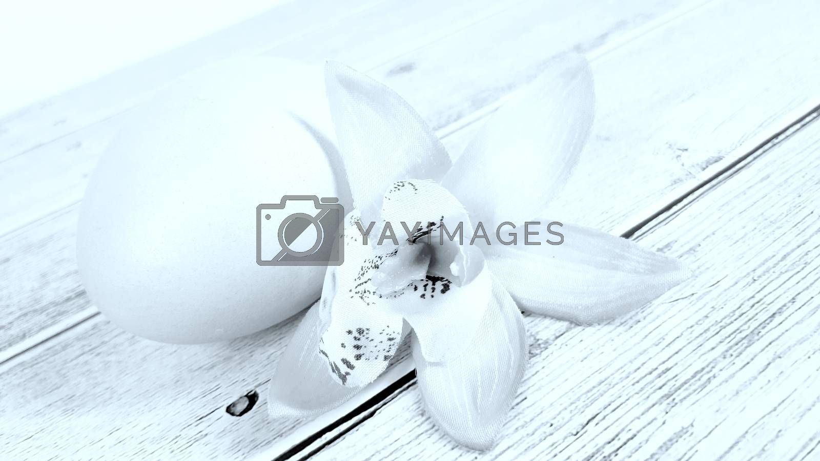 Easter egg and flower on a bright white background. Close-up.