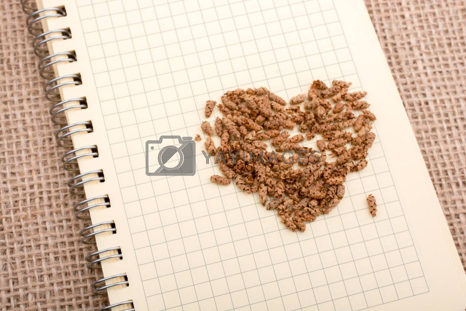 Brown leaves form heart shape on brown background