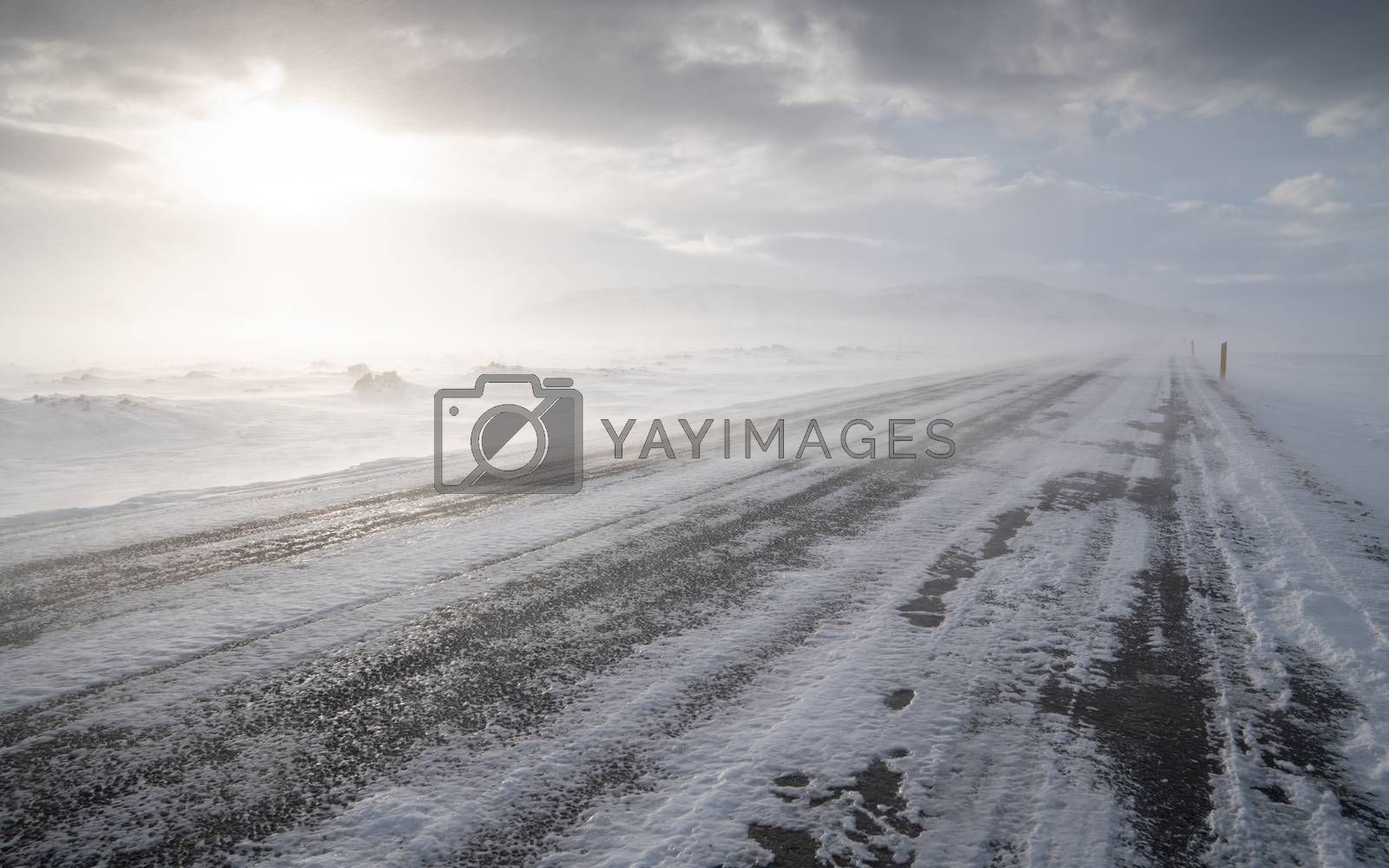 Blizzard, Iceland, Europe by Alexander Ludwig