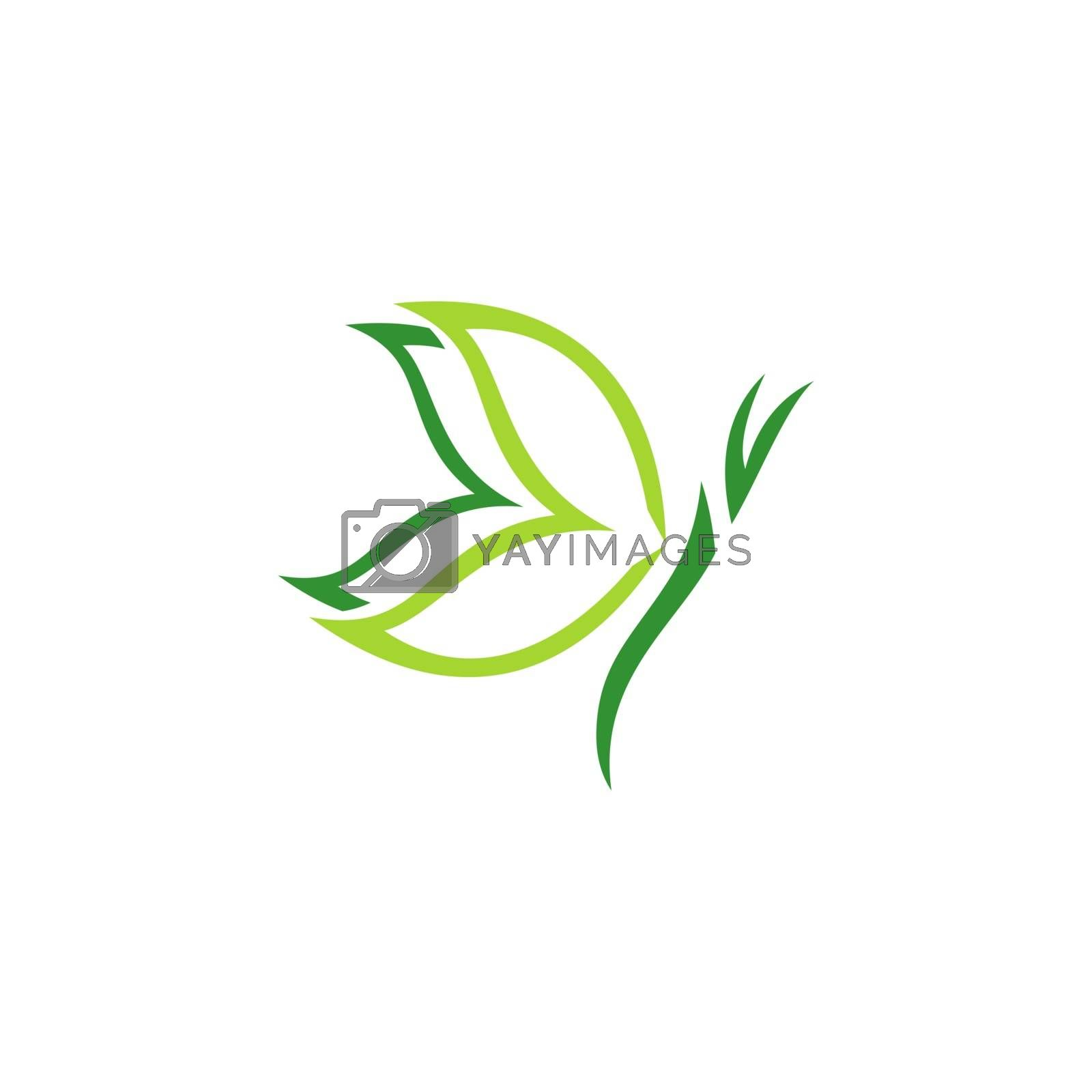 natural beauty green butterfly logo concept spa symbol icon vector design illustration