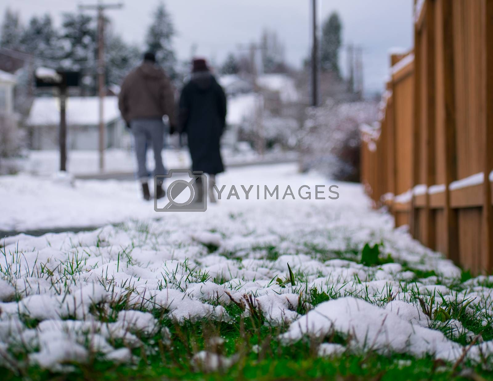 Two lovers holding hands and walking as the winter snow melts